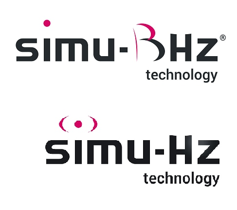 BHz/Hz: What are the differences?
